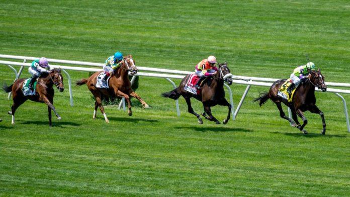 Horse racing in Singapore